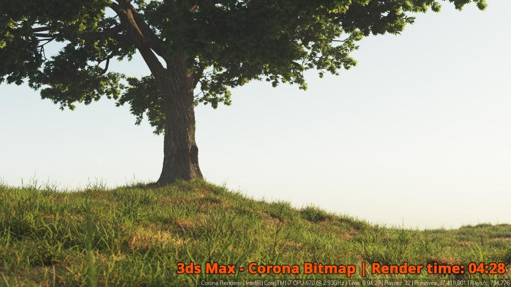 Corona Renderer - Corona Bitmap - Tree