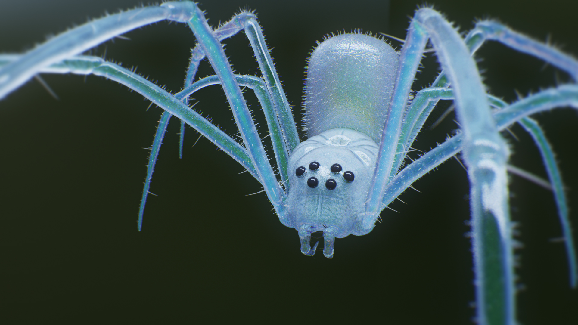 spider_lookdevCorona Renderer - Tendril - Spider - translucency