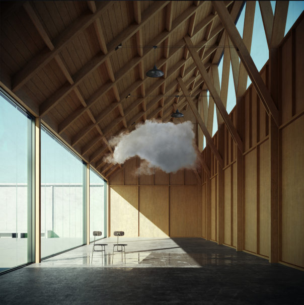 Taming A (Timber) Cloud - Taming clouds with Florin Botea
